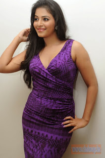 Anjali-at-Balupu-Successmeet