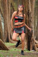 priyamani hot navels , hot in tamil , hot priyamani , hot pictures of tamil actress , videos of priyamani , tamil actress hot gallery , new bikini , free priyamani images , priyamani saree stills , priyamani jeans , hot images for actress ,