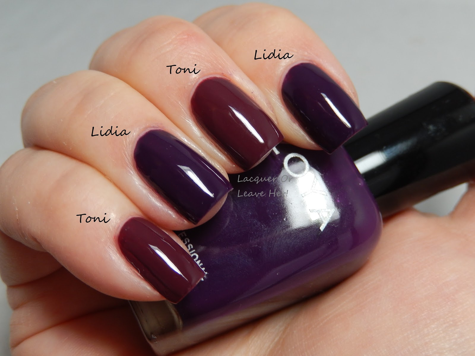 Lacquer or leave her comparison zoya purple cremes comparison of zoya lidia and zoya toni reheart Gallery