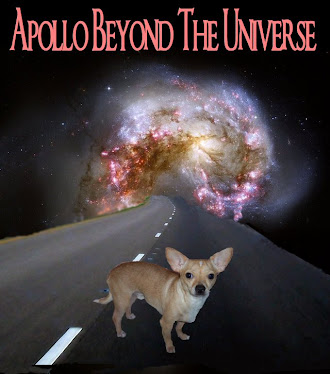 Apollo Beyond The Universe