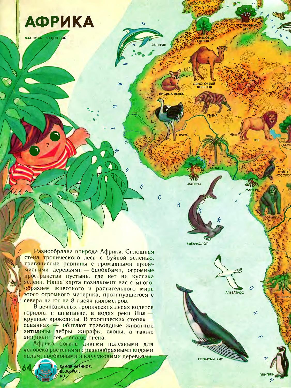Книга мальчик и девочка география советская. Мир вокруг нас. Мир вокруг нас СССР. Мир вокруг нас географический атлас для детей СССР. Мир вокруг нас энциклопедия. Мир вокруг нас книга. Мир вокруг нас атлас. Мир вокруг нас книга читать. Мир вокруг нас. географический атлас для детей. Мир вокруг нас атлас читать. Мир вокруг нас большая книга. Мир вокруг нас географический атлас для детей читать. Мир и человек любимый детский атлас. Мир и человек атлас. Мир вокруг нас атлас читать онлайн. Мир вокруг нас книга читать. Мир и человек атлас читать. Детский атлас СССР. Детский атлас мира. Мир и человек атлас читать онлайн. Атлас мир и человек. Атлас мир вокруг нас. Мир и человек географический атлас онлайн.