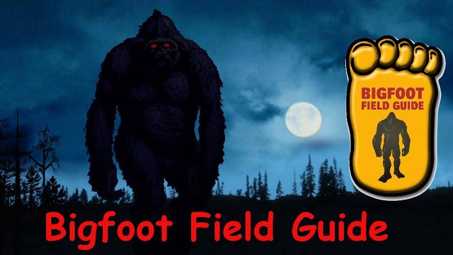 Bigfoot Field Guide