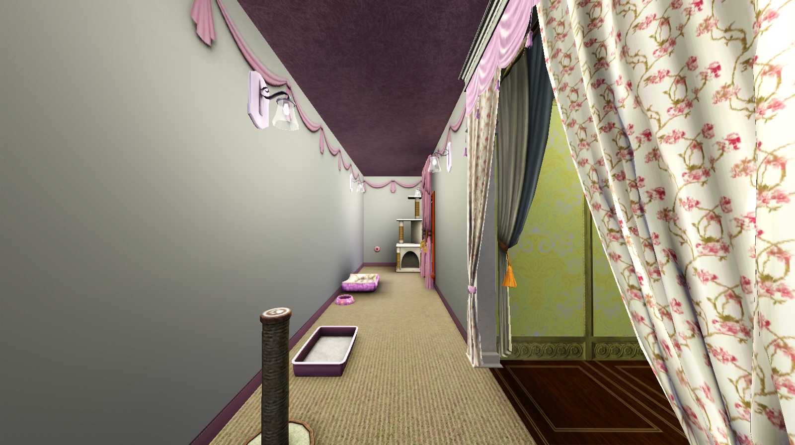 ミオの部屋