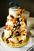 Autumn Decorated Cakes1