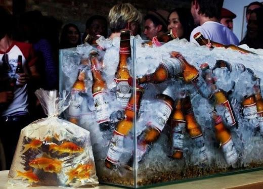 Pecera llena de cervezas