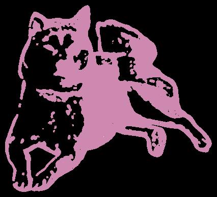 秋田犬(動物)