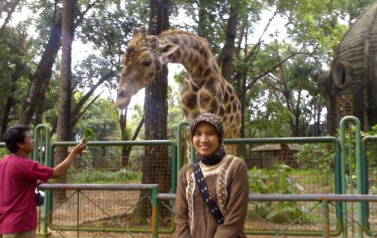 Kebun Binatang Ragunan tempat wisata di jakarta selatan