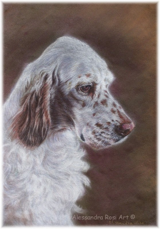 Custom Pet Portraits - Custom Portrait Painting - Animal Art