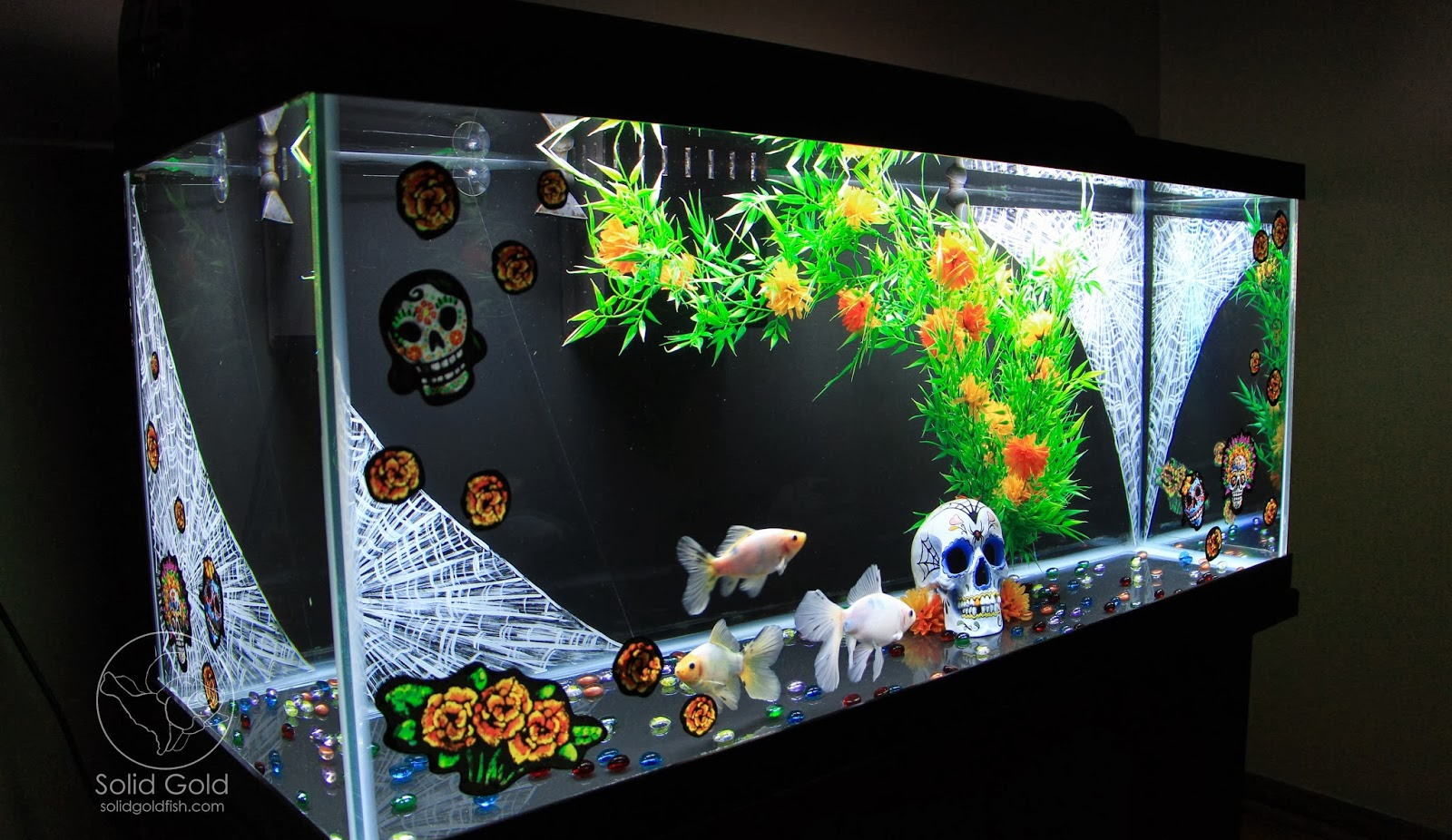 Dia de los muertos goldfish tank solid gold aquatics for Aquarium decoration paint