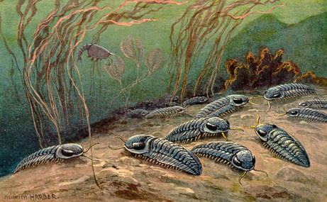 Resultado de imagen de extincion del ordovicico