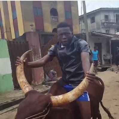 Comedian Akpororo riding his cow to Warri,Akpororo on a cow,Akpororo rides a cow,Akpororo and cow 5