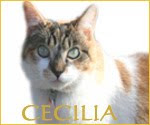Cecilia