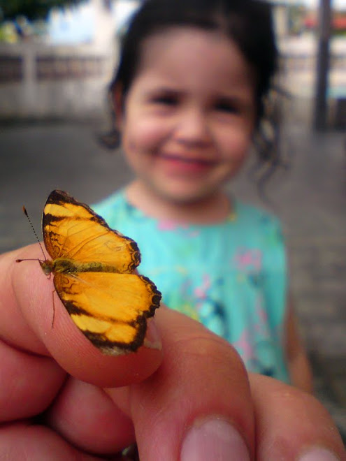 My daughter delighted with the butterfly! Minha filhota encantada com a borboleta...