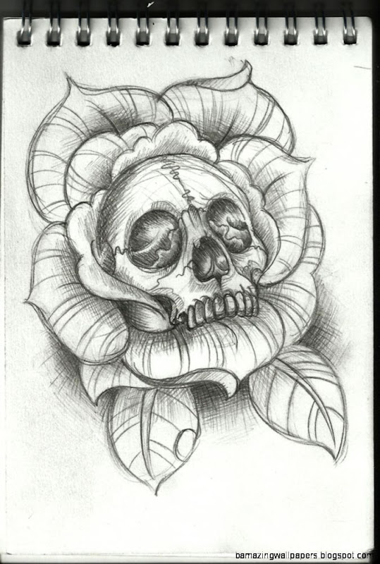drawing tattoo rose tattoo skull tattoo tattoo sketch skull and