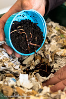 Worm Factory 360, compost, worm, vermicompost, garden, worm castings, fertilizer red wigglers