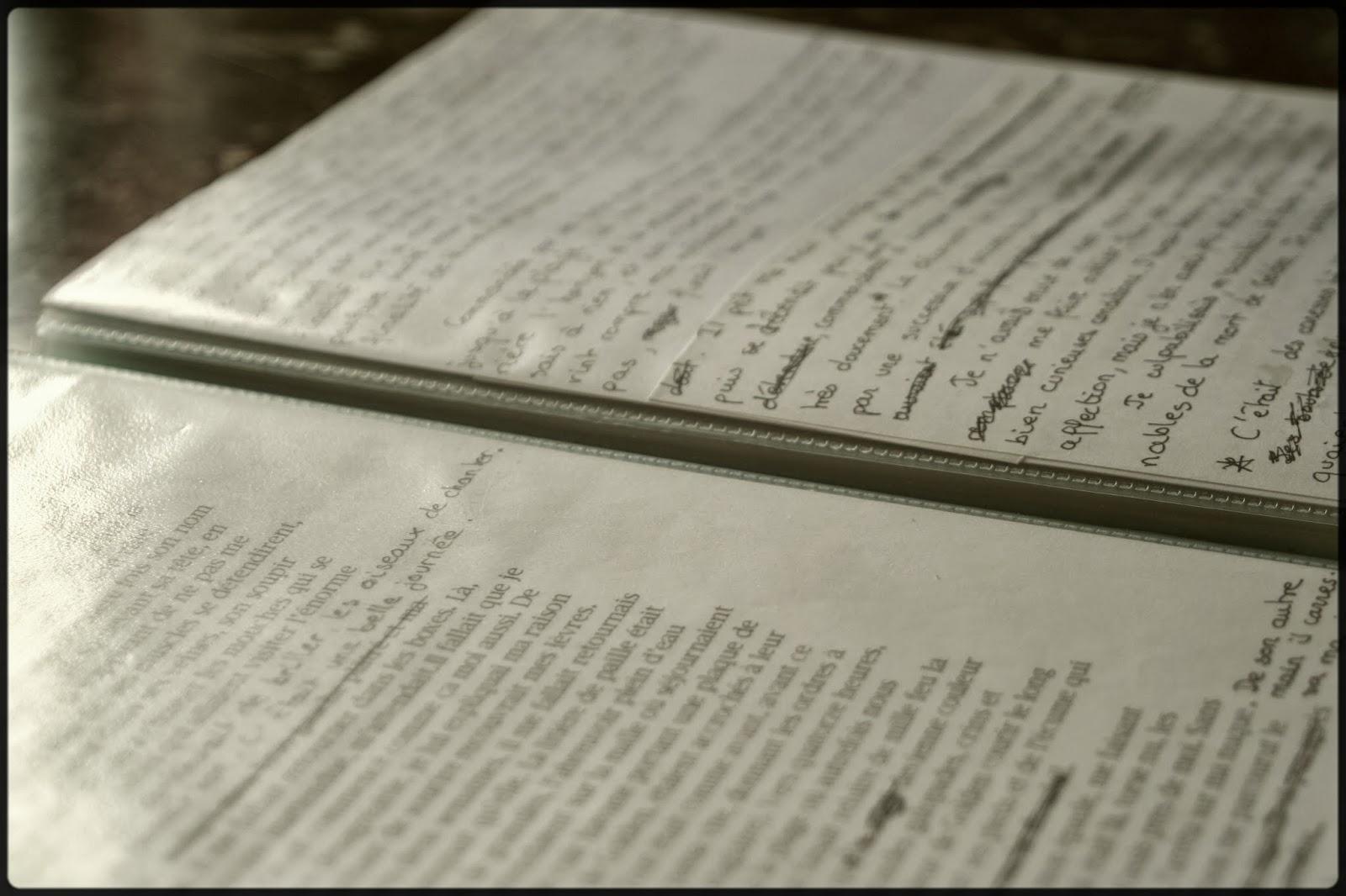 L'histoire qui ne dit pas son nom - manuscrit