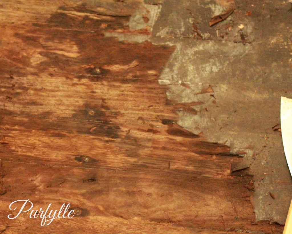 rotted hardwood floor