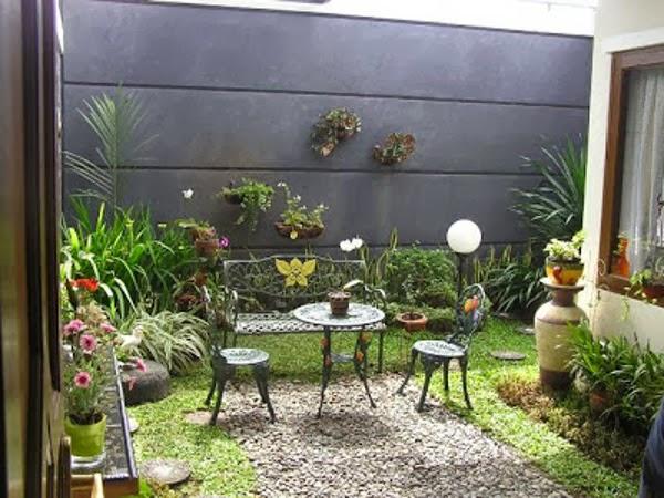 tanaman hias taman minimalis
