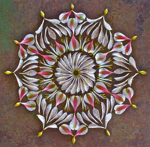mandala creada con flores naturales