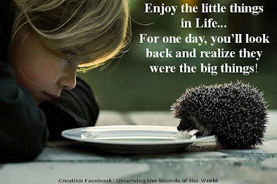 Enjoy little things in life, For one day, you'll look back and realize they were the big things