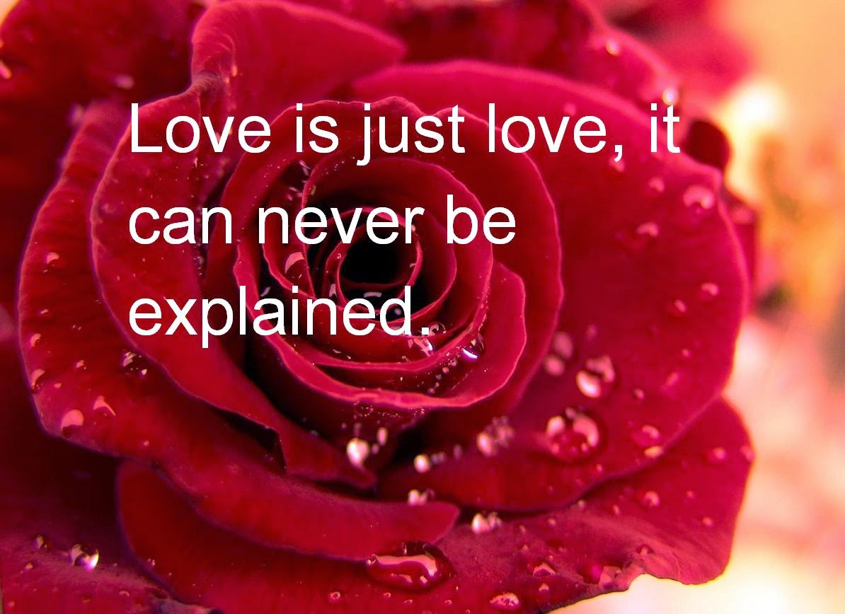 Unlimited Velentineu0027s Day Images Love Is Just Love