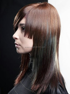 ksfhhaircut4 Bold Hair Highlights Ideas