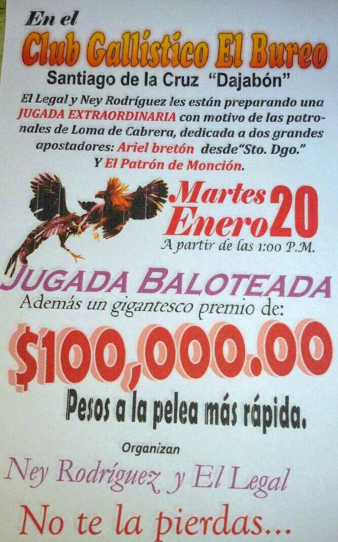 Martes 20 de Enero CLUB GALLISTICO EL BUREO de Santiago de La Cruz de Dajabón
