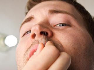 Para que servem os pêlos no nariz?