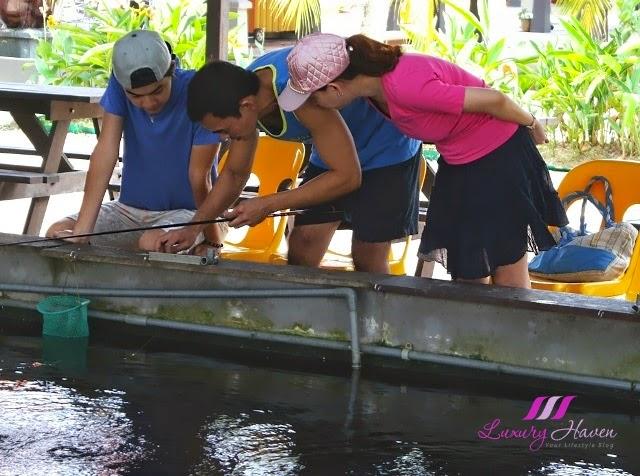singapore kranji farm resort prawning activities