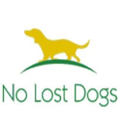 No Lost Dogs