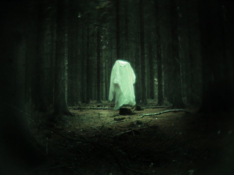 Logulogu Haunted Forest