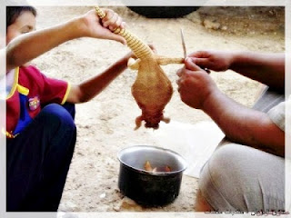 anak-arab-memotong-dhabb