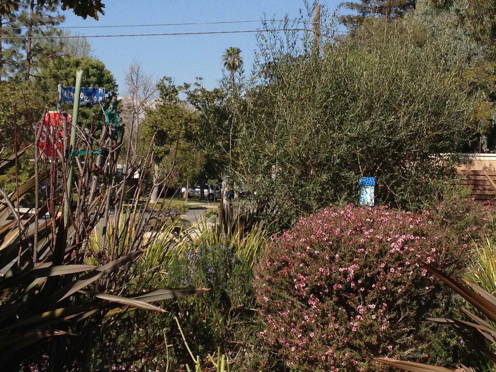 2018 Mar Vista Green Garden Showcase: 3600 Meier Street