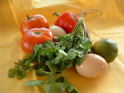 Learn more about the sustainable food movement. Buy local Florida organic food