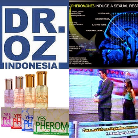Dr Oz Indonesia Parfum Feromon Pria Tips Diet