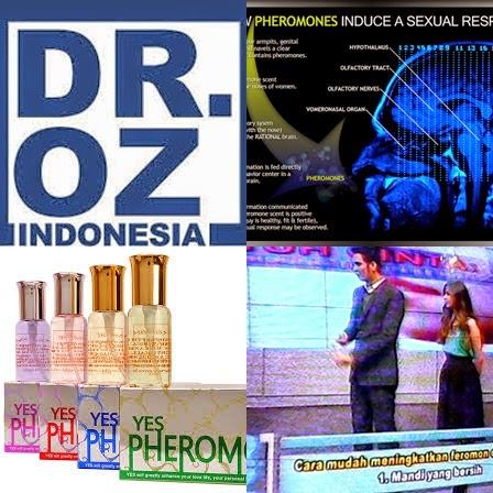 Dr Oz Indonesia Parfum Feromon Pria