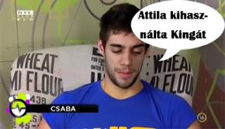 Csaba véleménye