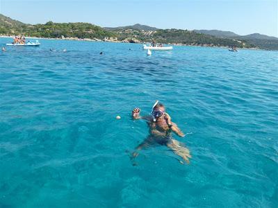 pesci balestra spiaggia del Simius