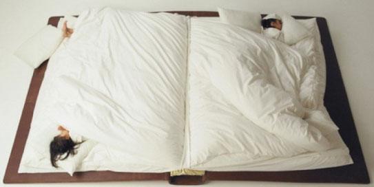 cama libro