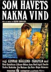 One Swedish Summer (1968)