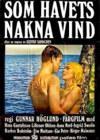 One Swedish Summer (1968)