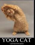 Yoga X