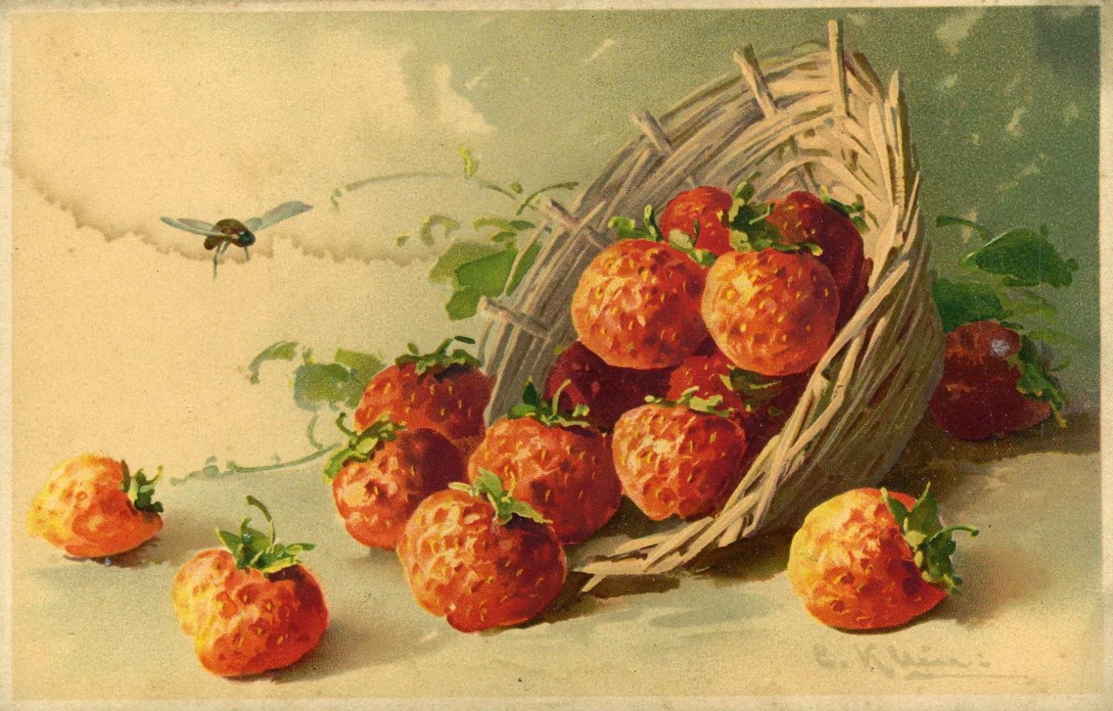 http://3.bp.blogspot.com/-RrmTxXUzLsM/U57JYwBdgUI/AAAAAAAAKb8/wQ-DA5drlmg/s1600/lbb+klein+strawberries.jpg