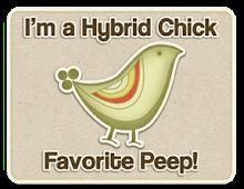 I'm a Hybrid Chick