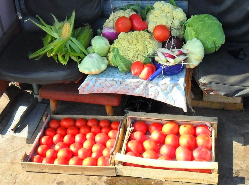 Желаю всем огородникам хороших урожаев!