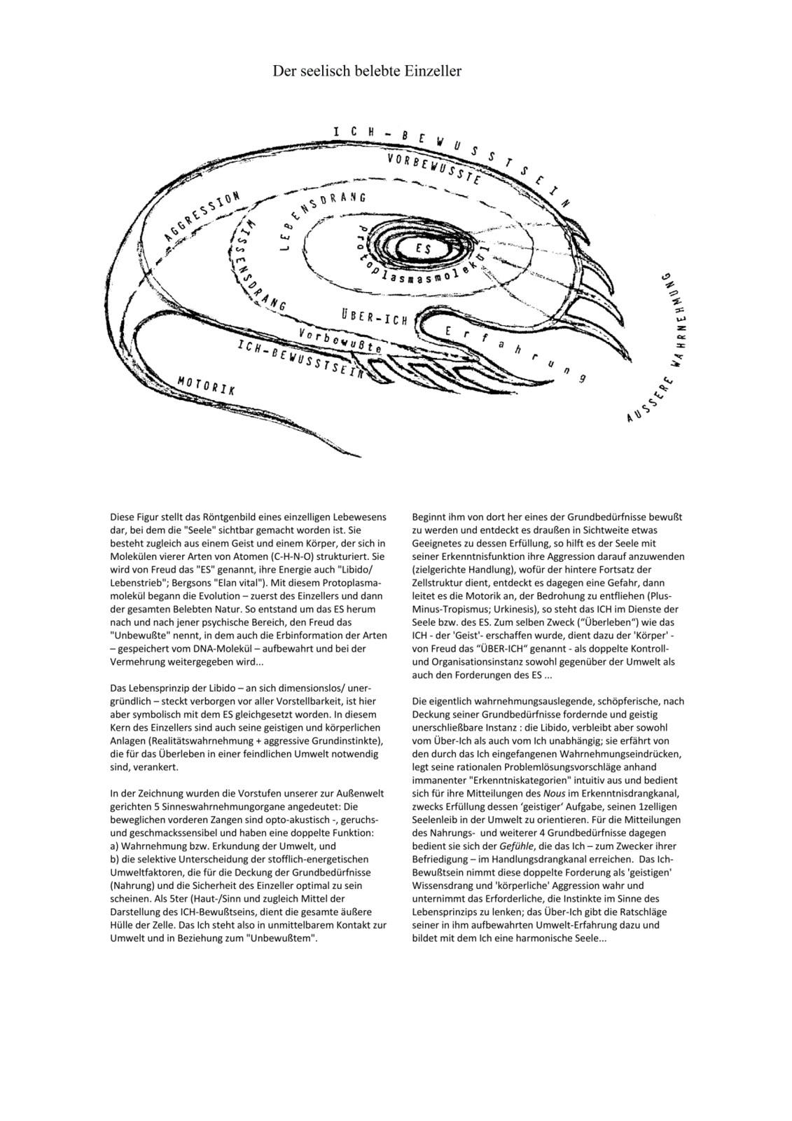 Darwins Beitrag zum Strukturmodell der Psyche