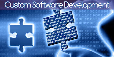 Customized software development services delhi