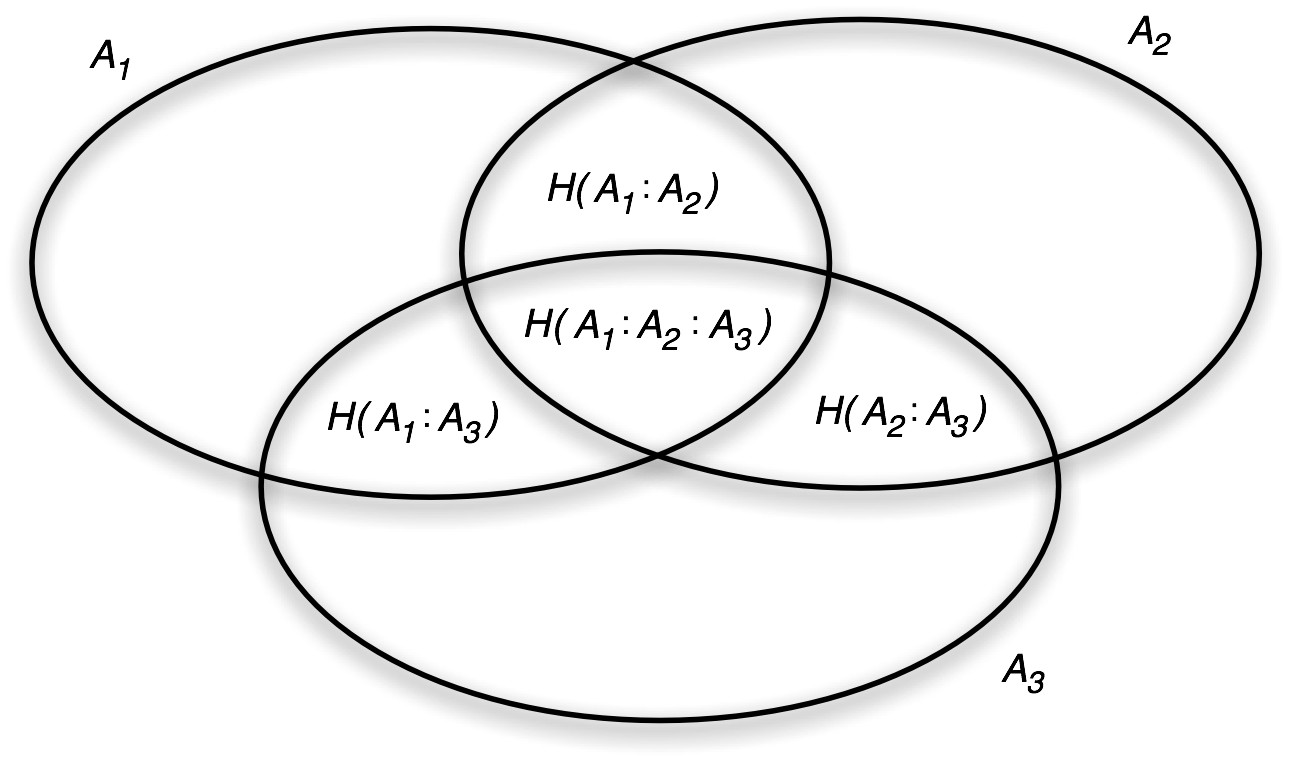 Entropy Venn diagram for three random variables, with the correlation entropries indicated.