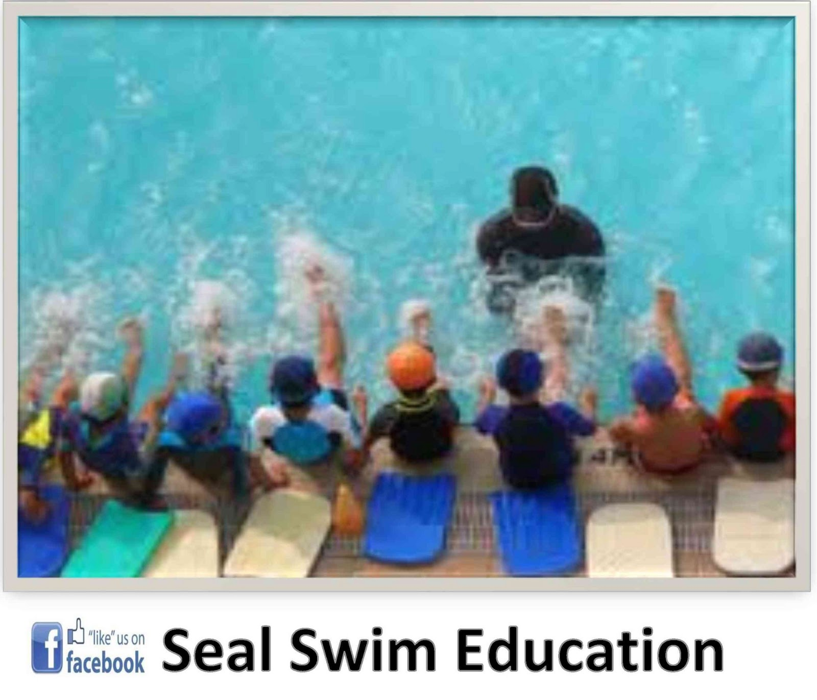 Seal Swim Education