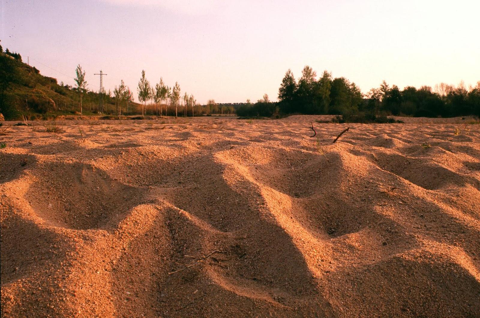 Peces y plantas ornamentales el suelo del estanque for Suelo besar el suelo xd